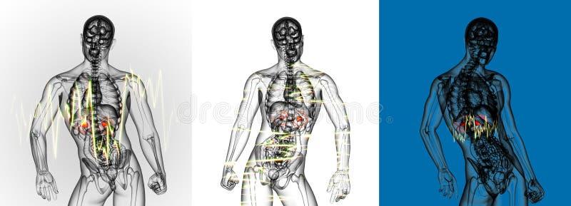 adrenal ból royalty ilustracja