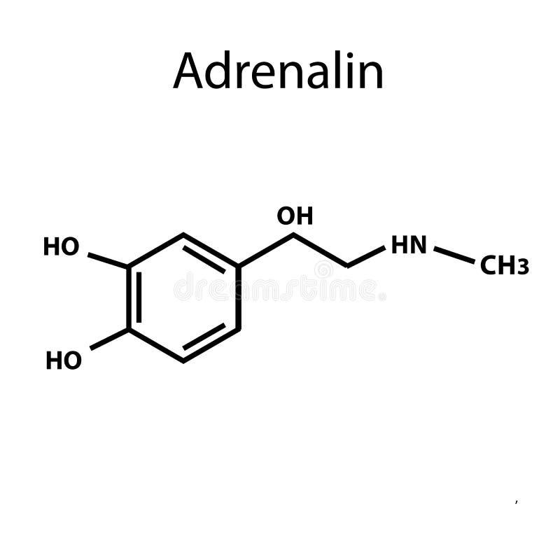 A adrenalina é uma hormona Fórmula química Ilustração do vetor no fundo isolado ilustração stock