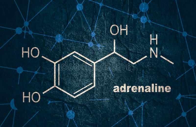 Adrenalina da hormona da fórmula ilustração stock