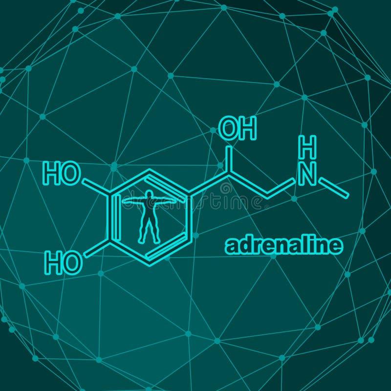 Adrenalina da hormona da fórmula ilustração do vetor