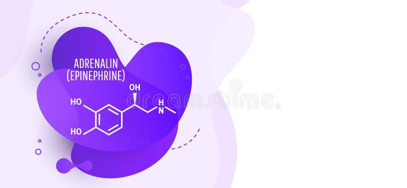Adrenalinadrenalin, epinephrinemolekyl stock illustrationer