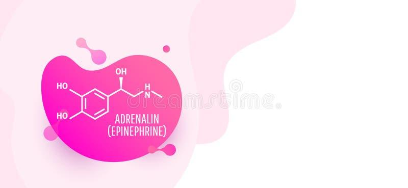 Adrenalinadrenalin, epinephrinemolekyl royaltyfri illustrationer