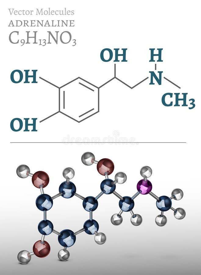 Adrenalinmolekylbild vektor illustrationer