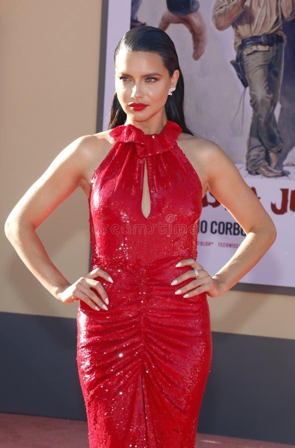 Adriana Lima royalty free stock photos