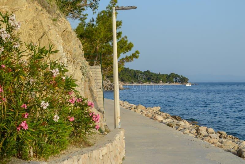 Adriatische Seek?ste stockbilder