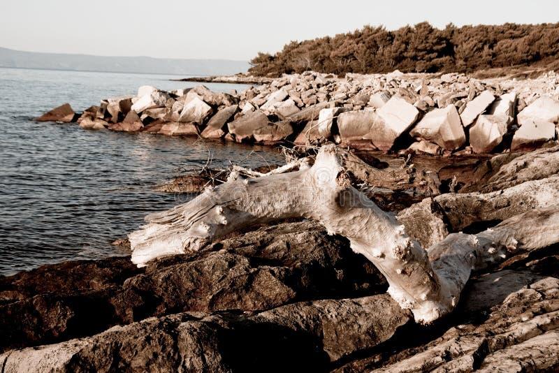 Adriatischer Schacht lizenzfreies stockbild