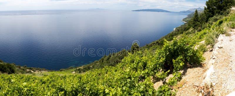 Adriatisches Meer, Kroatien lizenzfreies stockfoto