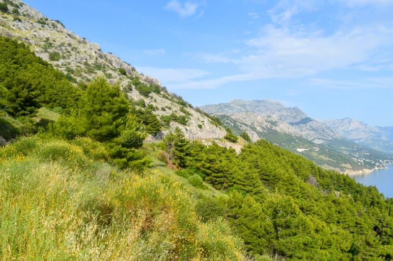Adriatiskt havkust Makarska riviera av Dalmatia arkivbild