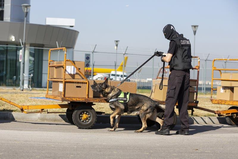 Aduanas y oficial y perro de la protección de la frontera fotos de archivo libres de regalías