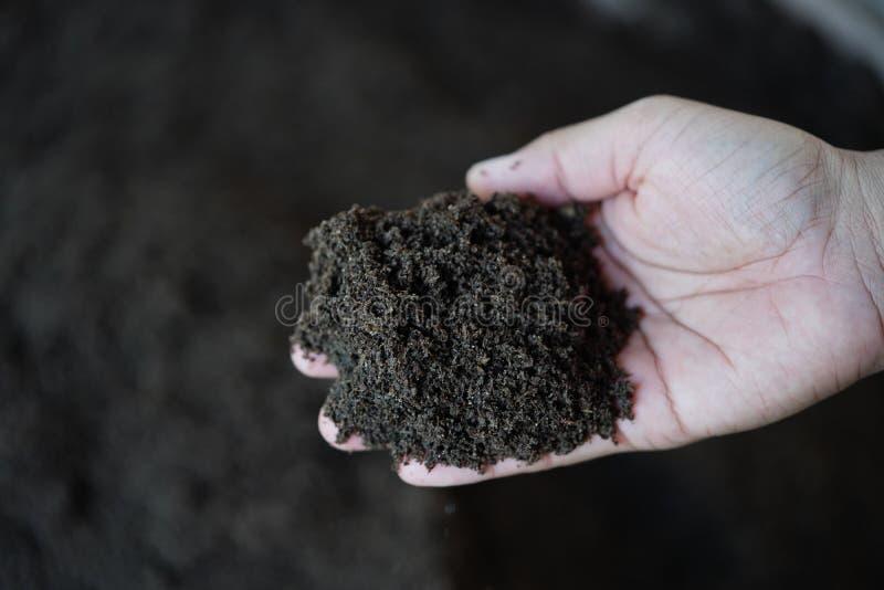 Adubo de Vermicompost para plantar ?rvores fotografia de stock royalty free