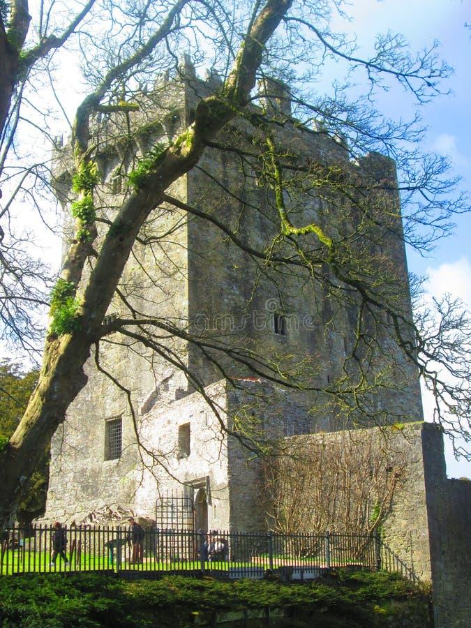 Adular o castelo fotografia de stock