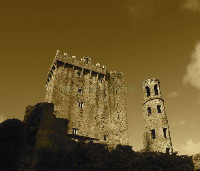 Adular o castelo com torre foto de stock royalty free