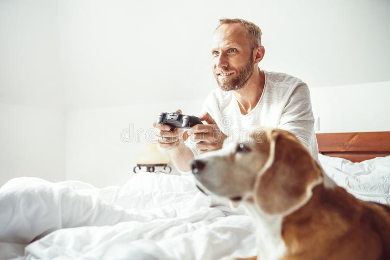 Adult breaded man waked up and plays PC games don`t stands up from bed.His beagle dog watching the game with very interest stock images