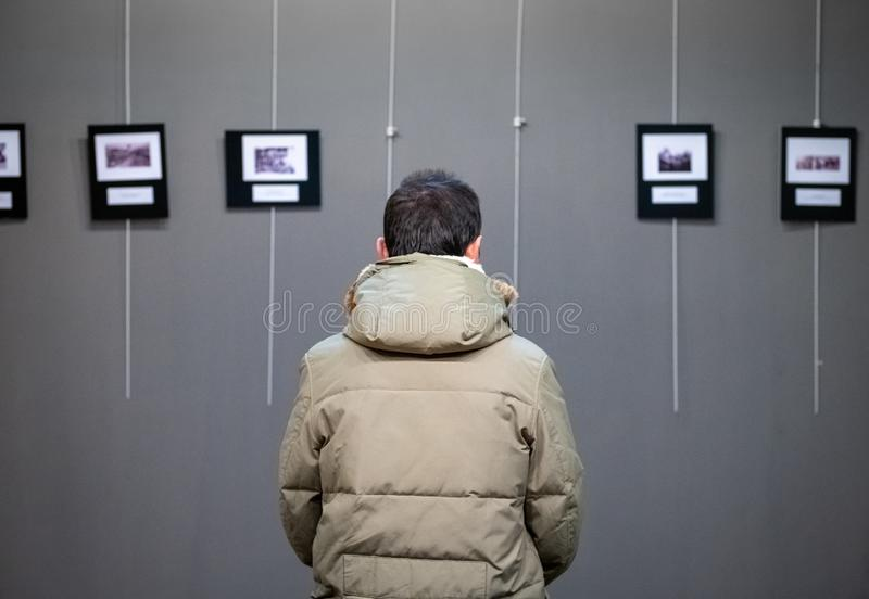 Adult Caucasian man visiting exhibition in modern art gallery stock photography
