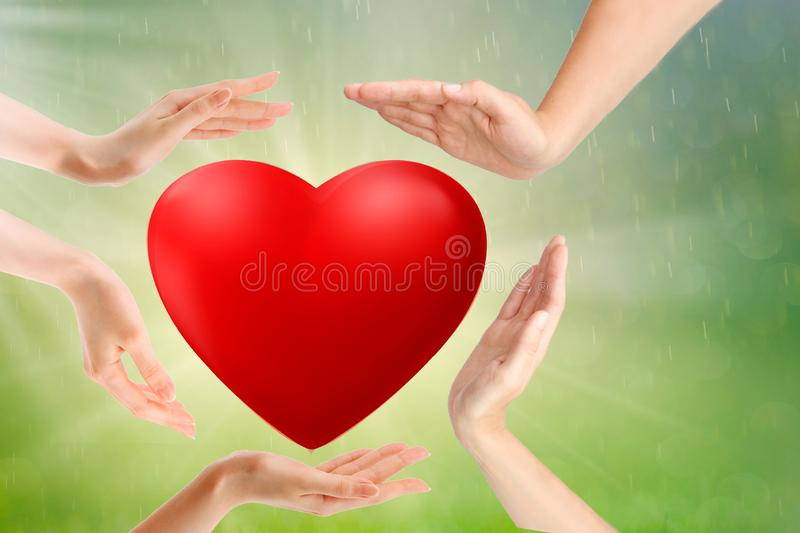 adult and child hands holding red heart, health care, love and family insurance concept, world heart day, world health day stock images
