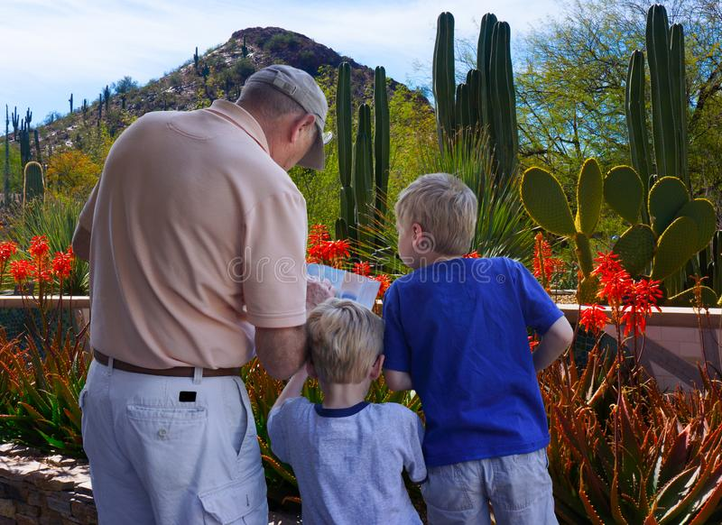 Adult and Children Hiking Desert Arizona. Twin boys and their grandfather check hiking trail map before setting out on day excursion on the desert. Location is royalty free stock photo