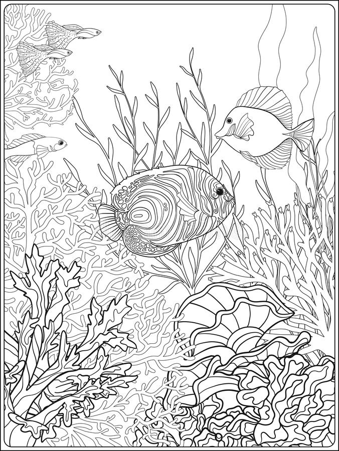 Top 10 Coral Coloring Pages For Toddler | 900x676