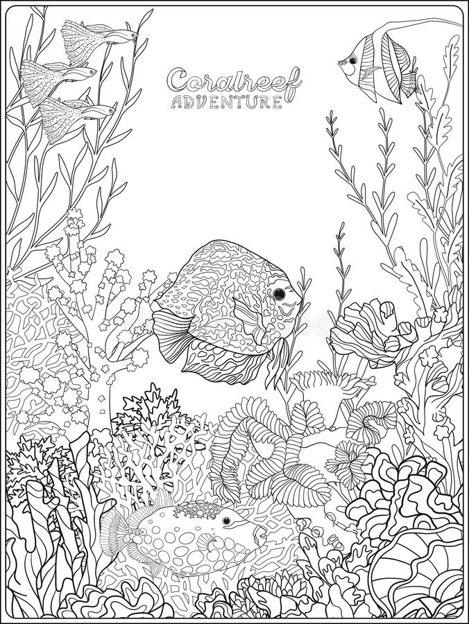 Adult Coloring Book. Coloring Page With Underwater World Coral Reef. Stock  Illustration - Illustration Of Blue, Diving: 101607144