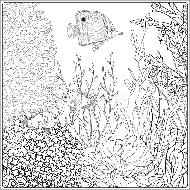 Coloring page with underwater world coral reef. Corals, fish and seaweeds. stock illustration