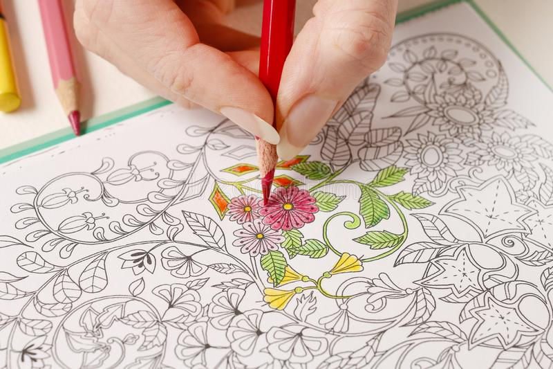 Adult coloring book. Hobby time stock image
