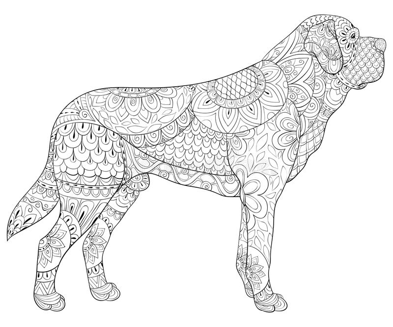 Adult coloring book,page a cute isolated dog for relaxing.Zen art style illustration. A cute isolated dog with floral ornaments for relaxing.Poster design royalty free illustration