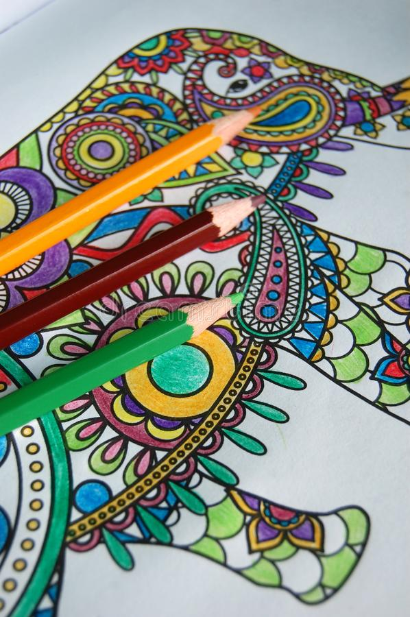 Adult Coloring Book with Pencils royalty free stock photos
