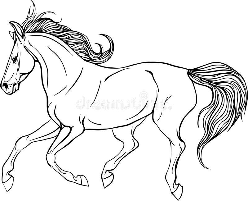 Download Adult Coloring Page Horse Stock Vector Illustration Of Nature