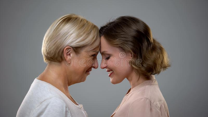 Adult daughter and mother touching foreheads looking each other, family love royalty free stock image
