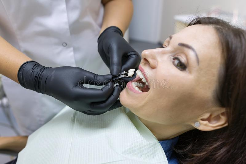 Adult female dentist choosing tooth implant. Medicine, dentistry and healthcare concept. Adult female dentist choosing tooth implant. Medicine, dentistry and stock photo