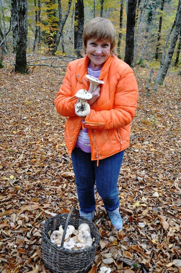 Download Adult Female Gathering Wild Mushrooms Stock Image - Image: 28415855