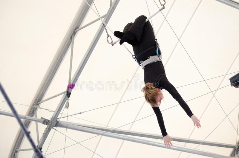 An adult female hangs on a flying trapeze at an indoor gym. The woman is an amateur trapeze artist. An adult female hangs on a flying trapeze at an indoor gym royalty free stock image