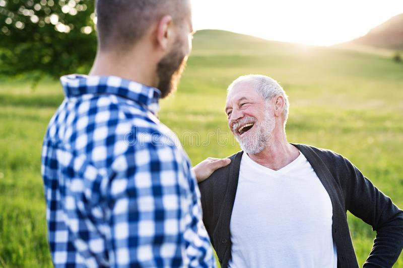 An adult hipster son with senior father on a walk in nature at sunset. royalty free stock images