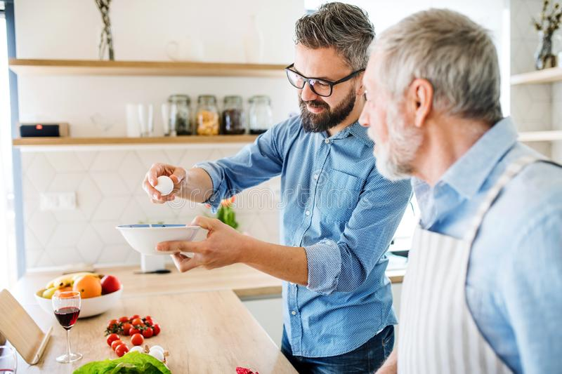 An adult hipster son and senior father indoors at home, cooking. An adult hipster son and senior father indoors in kitchen at home, cooking royalty free stock images