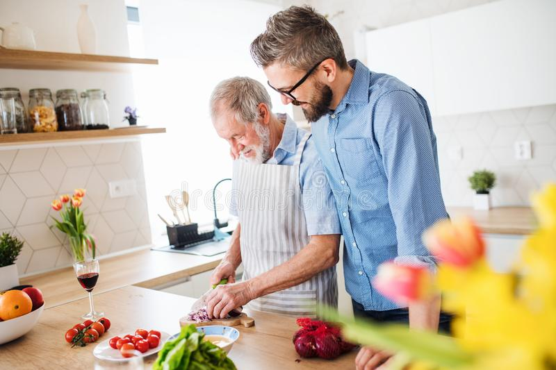 An adult hipster son and senior father indoors at home, cooking. royalty free stock photo