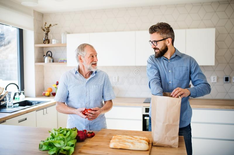 An adult hipster son and senior father indoors at home, unpacking shopping. A cheerful adult hipster son and senior father indoors in kitchen at home, unpacking royalty free stock photo