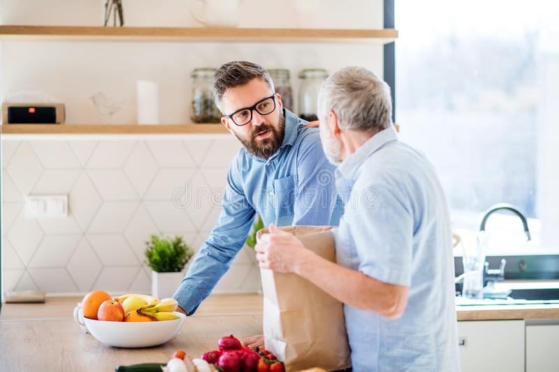An adult hipster son and senior father indoors at home, unpacking shopping. A cheerful adult hipster son and senior father indoors in kitchen at home, unpacking stock photos