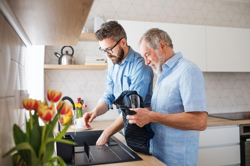 An adult hipster son and senior father indoors at home, washing dishes. royalty free stock photography