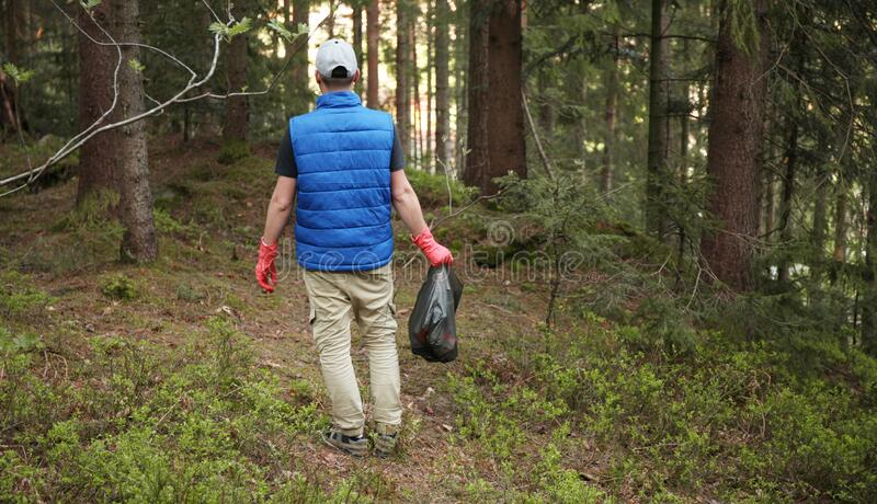 Adult man volunteer in red gloves removes plastic trash in forest, caring for environment.  royalty free stock photography