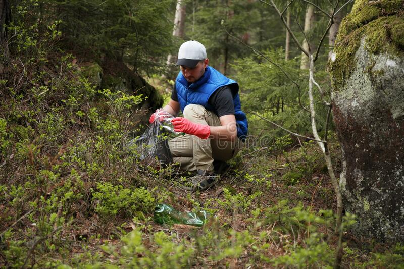 Adult man volunteer in red gloves removes plastic trash in forest, caring for environment.  stock image