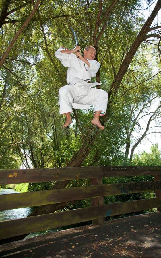 Download Adult Men Practicing Karate Outdoor Stock Photo - Image: 28668240