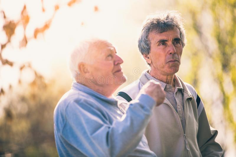 Adult son walking with his senior father in the park. royalty free stock photography