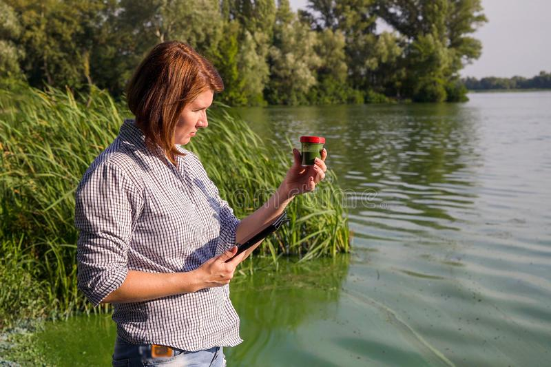 Woman ecologist on river bank examines sample of green algae and holds tablet. Adult woman ecologist on river bank examines sample of green algae and holds stock photo