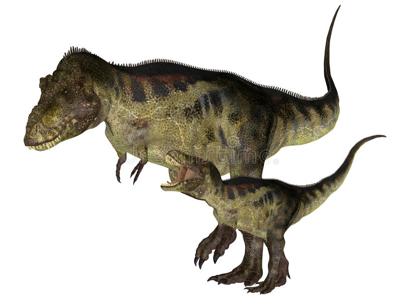 Adult And Young Tyrannosaurus Stock Photo