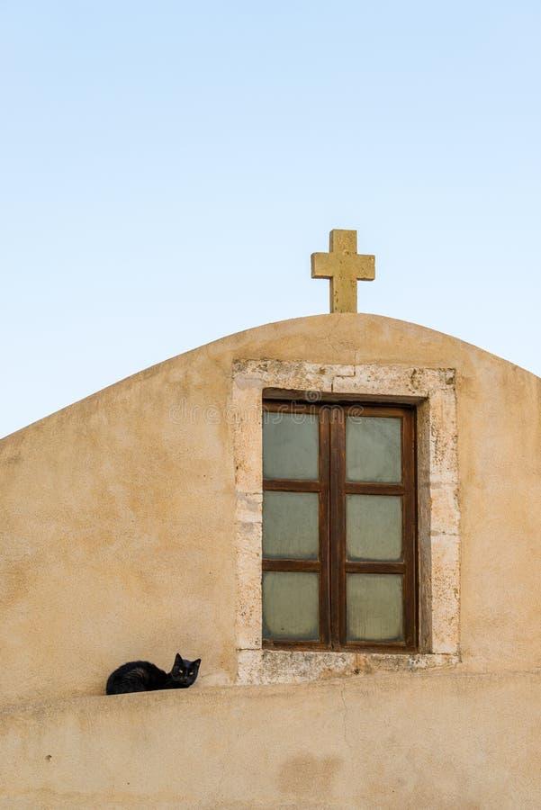Adulto perdido rojo del gato en una pared entre las calles medievales del th fotografía de archivo libre de regalías