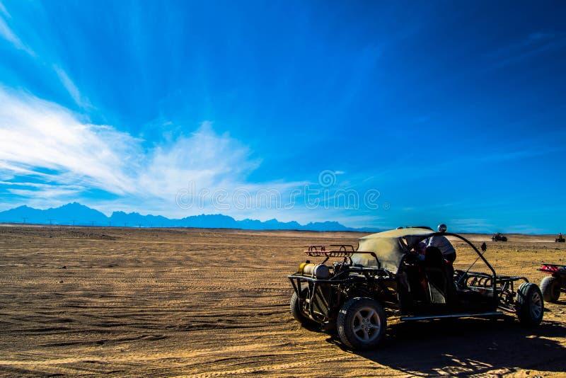 Advantage in the desert royalty free stock photos