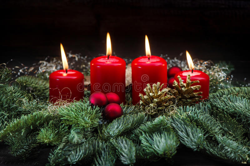 Advent decoration red burning candles christmas tree branches stock photos