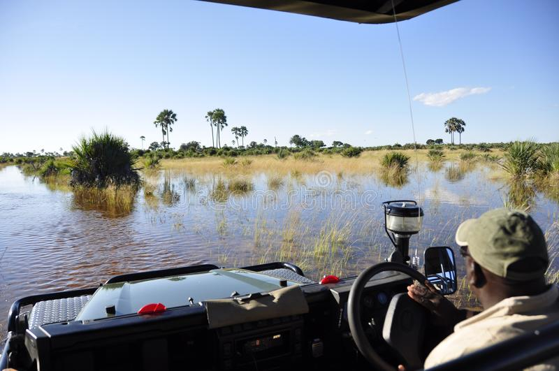 Adventure & Adrenalin pur: Okavango-Delta swamps crossing. With a landrover, which faced the biggest floods since 46 years royalty free stock image