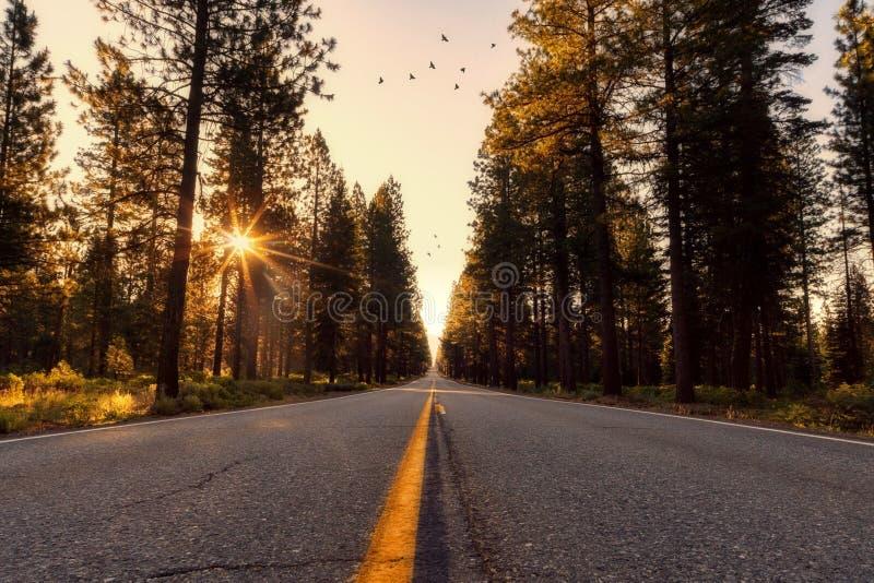 Adventure, Asphalt, California royalty free stock photos