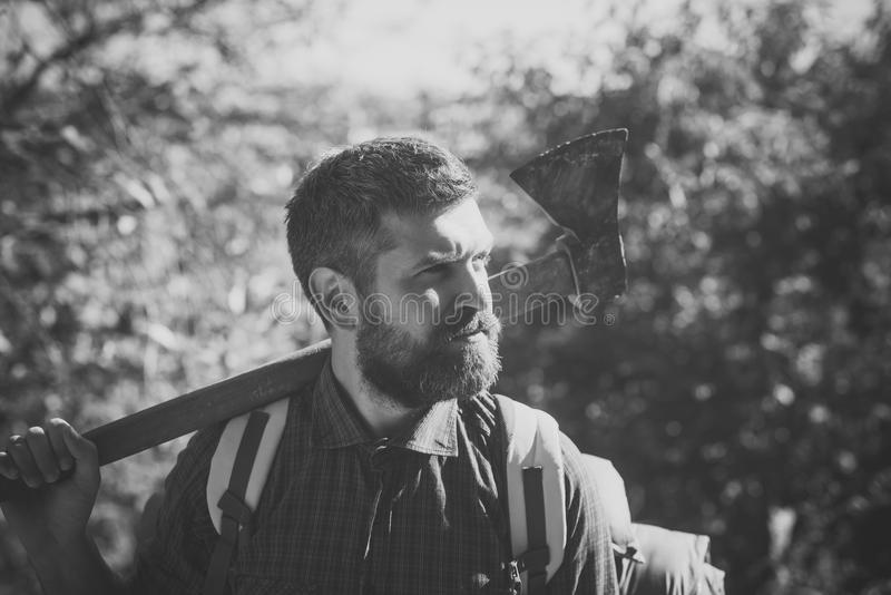 Adventure, discovery, wanderlust. Man lumberjack with beard hold axe on shoulder. On sunny day on natural landscape. Logging and chopping concept royalty free stock images