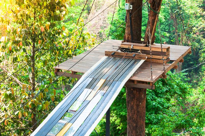 Adventure Park bridges, ropes and stairs designed for beginners in woods among tall trees royalty free stock image